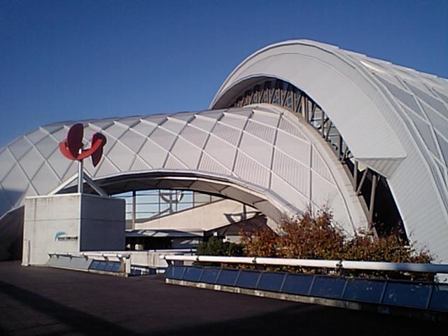 辰巳国際水泳場