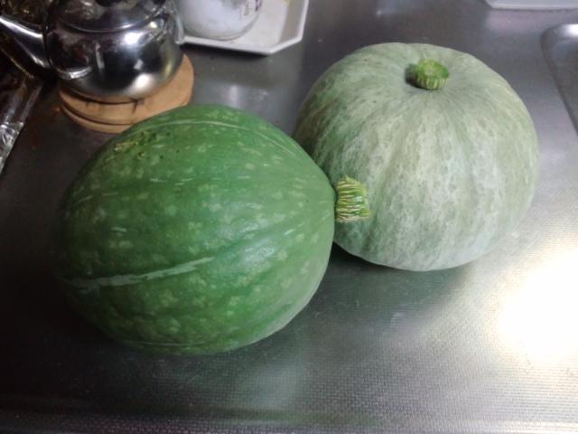 今年のかぼちゃ初収穫!